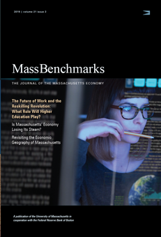 Cover of Journal showing a woman working on a computer.